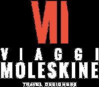 viaggi moleskine logo